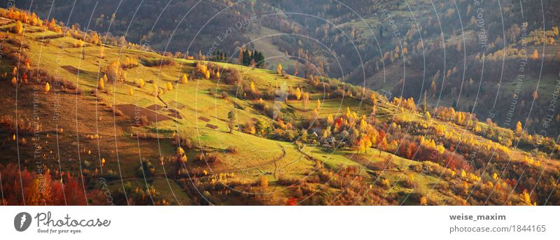 Autumn mountain panorama. October on Carpathian hills. Fall Nature Vacation & Travel Green Tree Landscape Red House (Residential Structure) Far-off places Forest Mountain Environment Yellow Lanes & trails Meadow Autumn Natural