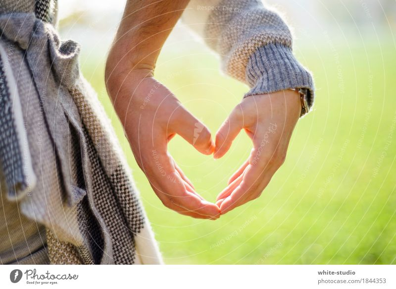 Just Love Human being Young woman Youth (Young adults) Young man Woman Adults Man Lovers Display of affection Love life Loving relationship Heart Hand