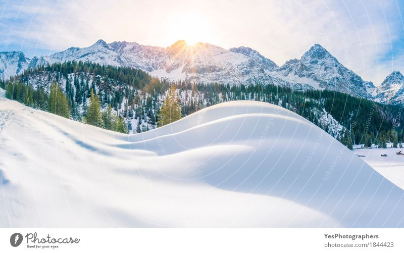 Sunny winter day in the Alps mountains Vacation & Travel Blue Christmas & Advent White Tree Landscape Joy Winter Forest Mountain Snow Happy Tourism Bright Dream