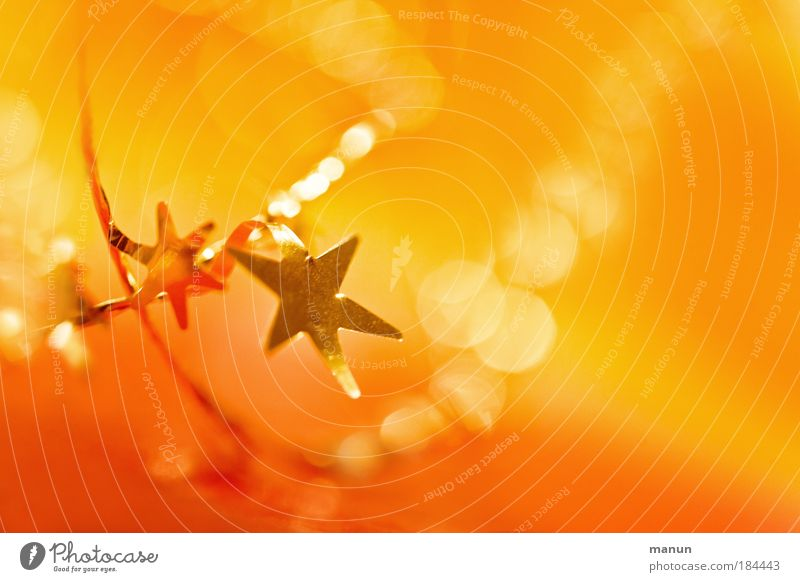 deux étoiles Colour photo Interior shot Copy Space right Copy Space top Neutral Background Artificial light Light Contrast Reflection Light (Natural Phenomenon)