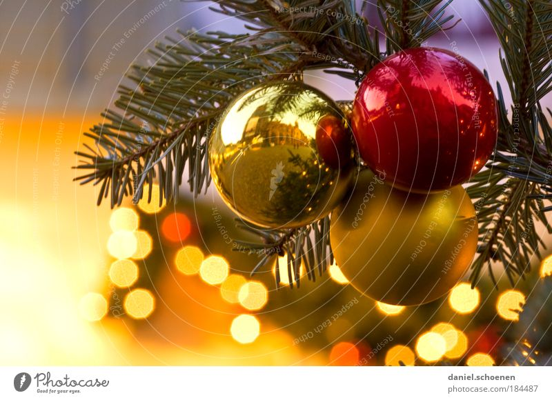 The main thing is a lot of gold on the tree Detail Twilight Decoration Gold Anticipation Glitter Ball Light Sphere Fir tree Christmas tree Christmas & Advent