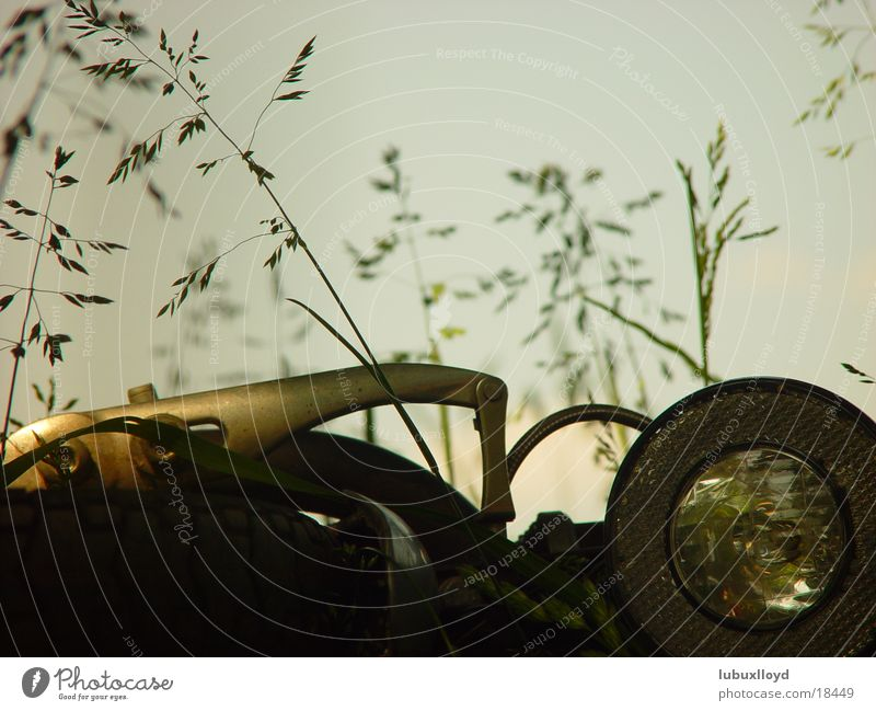 Nature Sun Green Summer Relaxation Meadow Transport Sewer