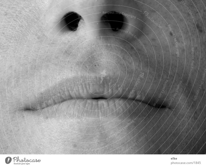 part face Human being Man Face Mouth Nose