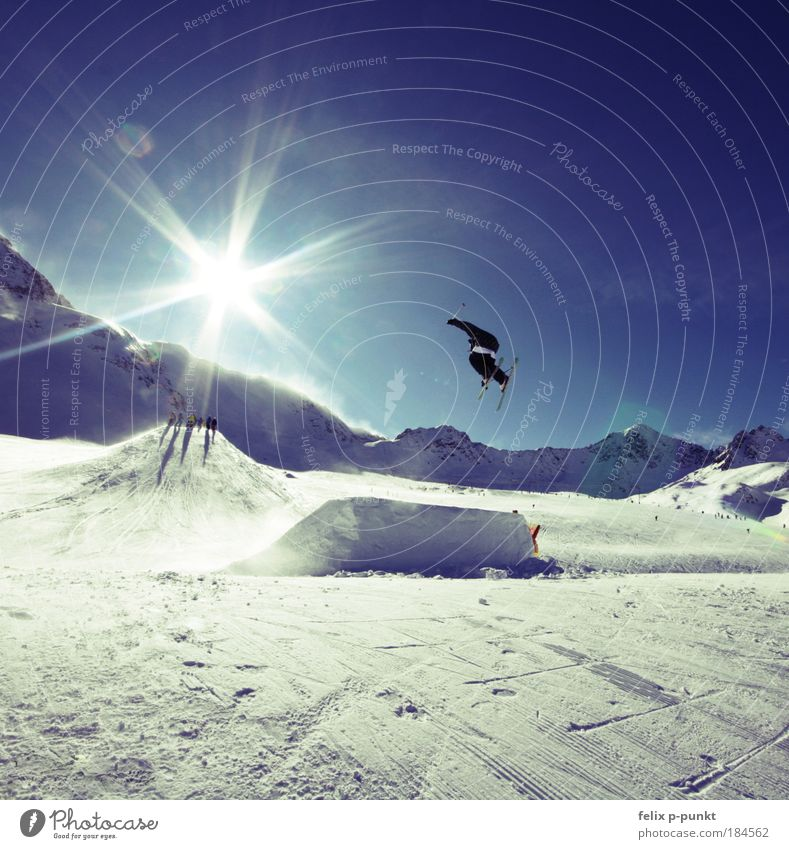 steezin Sports Success Skiing Ski run Halfpipe Human being Masculine Young man Youth (Young adults) 1 Environment Nature Landscape Sky Sun Winter
