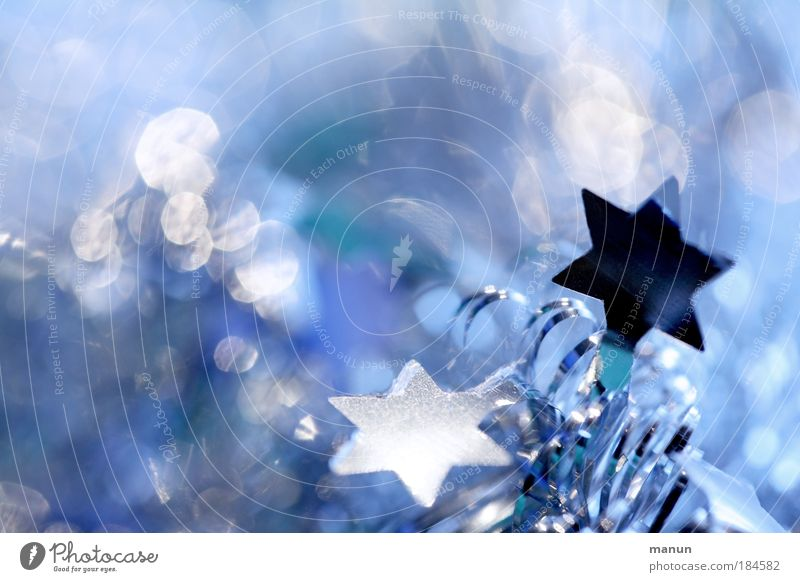 Christmas & Advent Blue White Calm Winter Cold Style Feasts & Celebrations Bright Design Glittering Fresh Illuminate Decoration Star (Symbol) Sign