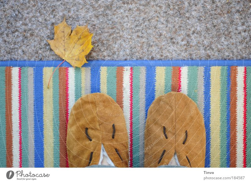 Leaf Loneliness Autumn Contentment Flat (apartment) Break Stand Floor covering Living or residing Balcony Boredom Leather Cozy Terrace Striped Expedition