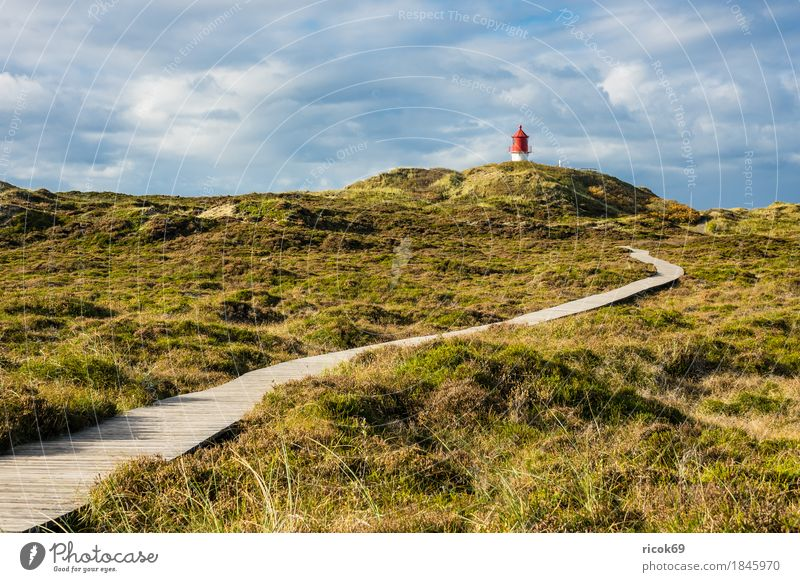 Lighthouse in Norddorf on the island Amrum Relaxation Vacation & Travel Tourism Island Nature Landscape Clouds Autumn Coast North Sea Architecture
