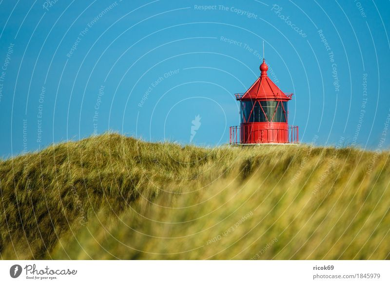 Lighthouse in Norddorf on the island Amrum Relaxation Vacation & Travel Tourism Island Nature Landscape Autumn Coast North Sea Architecture Tourist Attraction