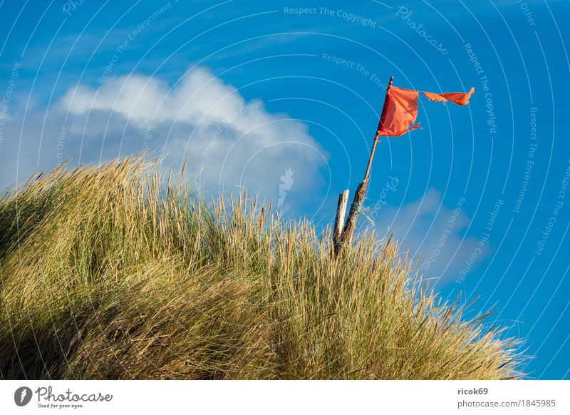 Landscape with dunes on the island of Amrum Relaxation Vacation & Travel Tourism Beach Ocean Island Nature Sand Clouds Autumn Coast North Sea Flag Blue Yellow