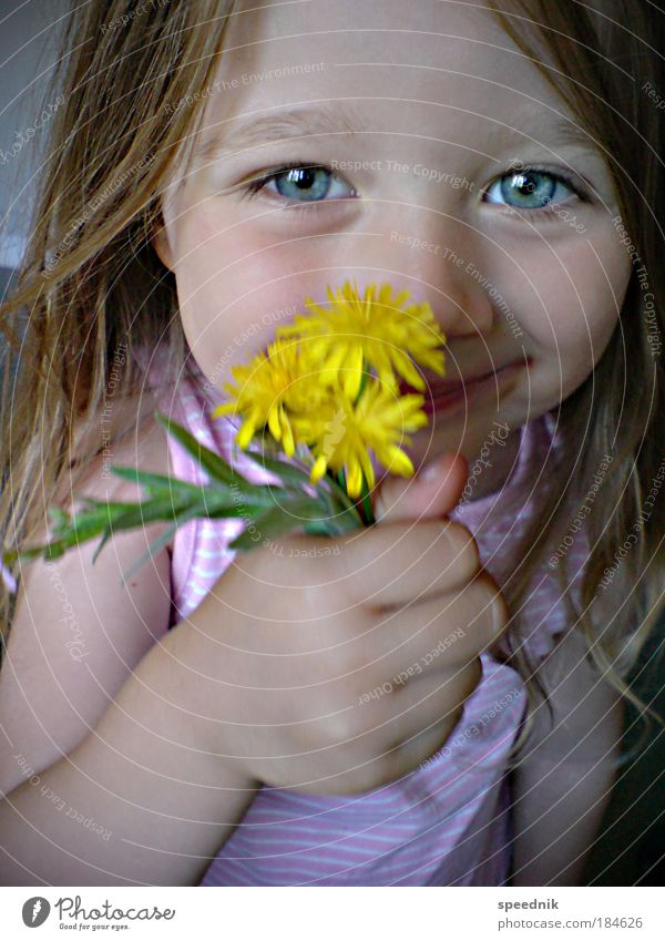 Human being Child Blue Girl Flower Face Eyes Love Yellow Feasts & Celebrations Portrait photograph Head Hair and hairstyles Happy Healthy Infancy