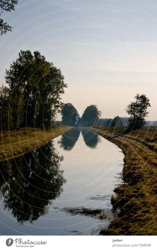 at the bend of the river Exterior shot Deserted Copy Space top Morning Central perspective Calm Nature Landscape Plant Water Tree River bank Natural Longing