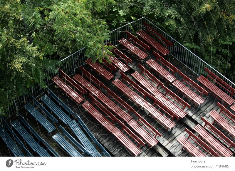 Tree Forest Empty Corner Bench Event Theatre Row Ruin Austria Outdoor festival Federal State of Styria