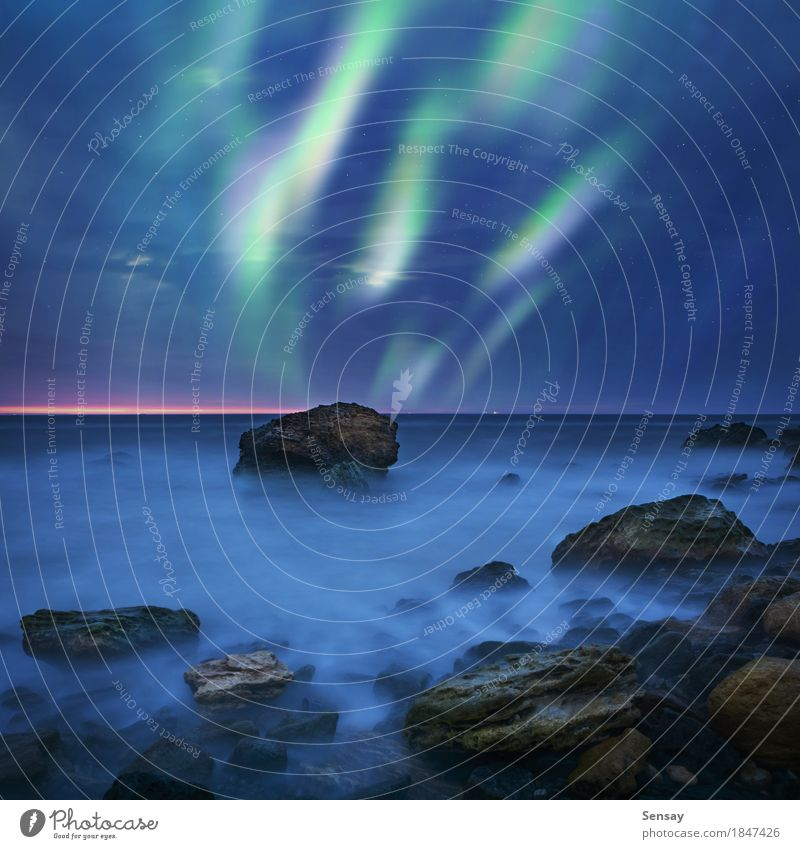 Aurora borealis over the sea Ocean Winter Nature Landscape Sky Lake Dark Bright Natural Green Colour northern Iceland background North Sweden space cold stars