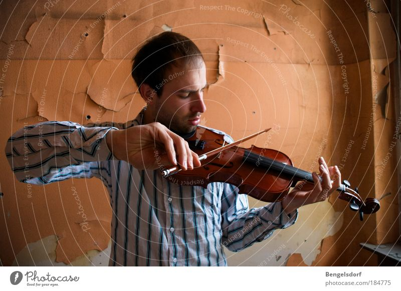 Human being Hand Youth (Young adults) Calm Playing Music Wood Orange Art Leisure and hobbies String instrument Artist Concert Wallpaper Concentrate Listening