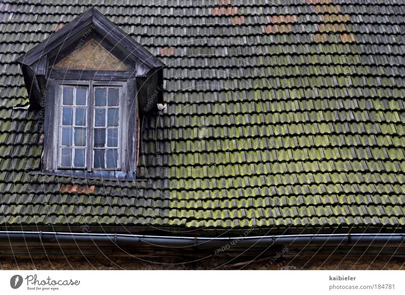Old Green Red House (Residential Structure) Window Building Brown Architecture Roof Broken Transience Village Idyll Decline Past Manmade structures