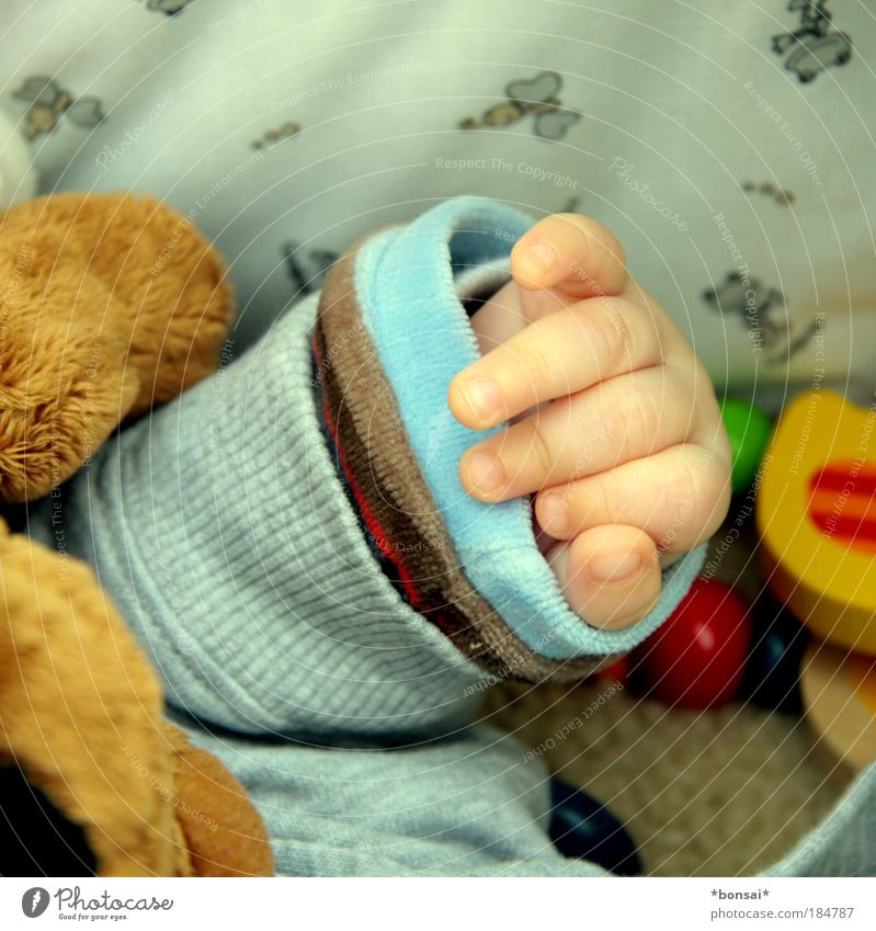 Hand Relaxation Warmth Small Happy Infancy Baby Lie Fingers Sleep Future Safety Warm-heartedness Protection Toys Near