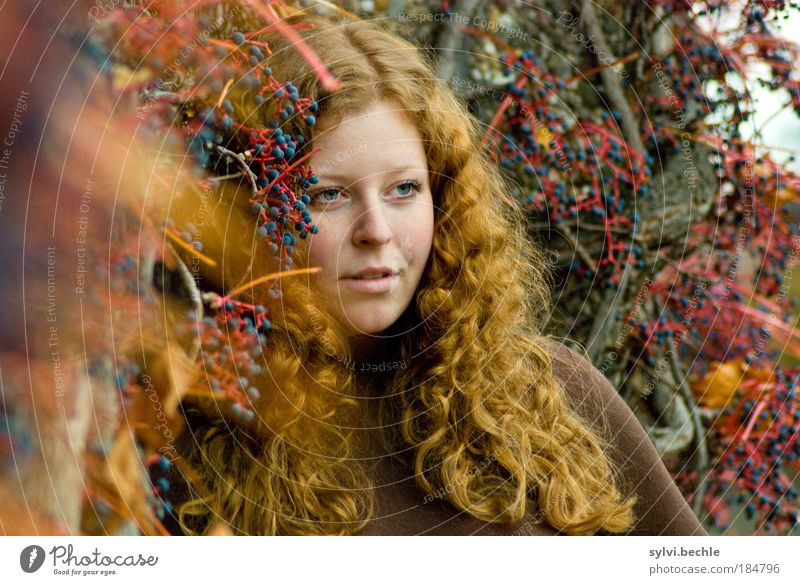 Red! Beautiful Feminine Young woman Youth (Young adults) Hair and hairstyles Face Autumn Bushes Blue Brown Emotions Moody Colour Dream Curl Berries Fruit