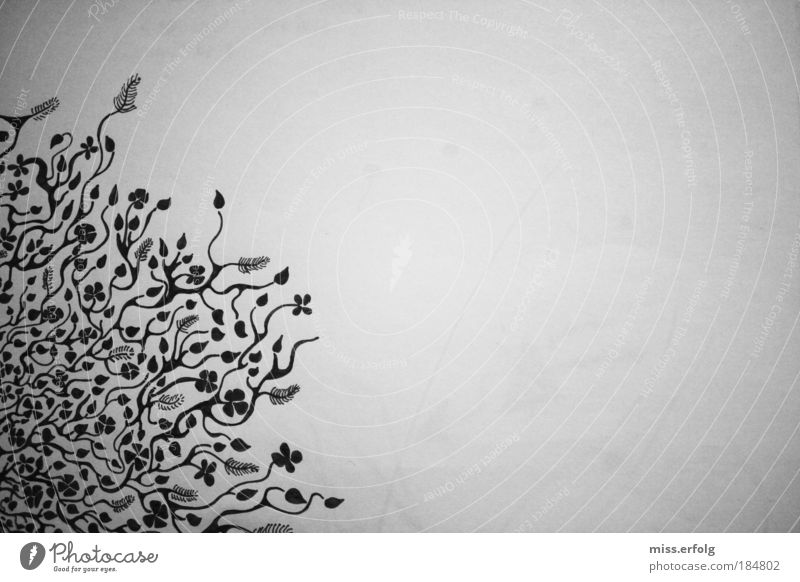 Flower Pattern Beautiful White Plant Black Animal Happy Dream Deserted Crazy Paper Happiness Round Near Soft