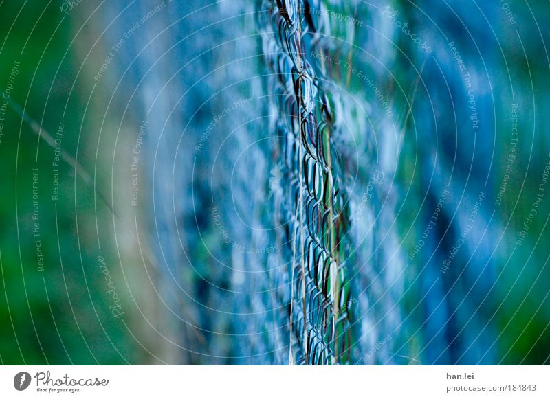 Green Blue Grass Metal Border Fence Depth of field Autumnal colours Autumnal weather