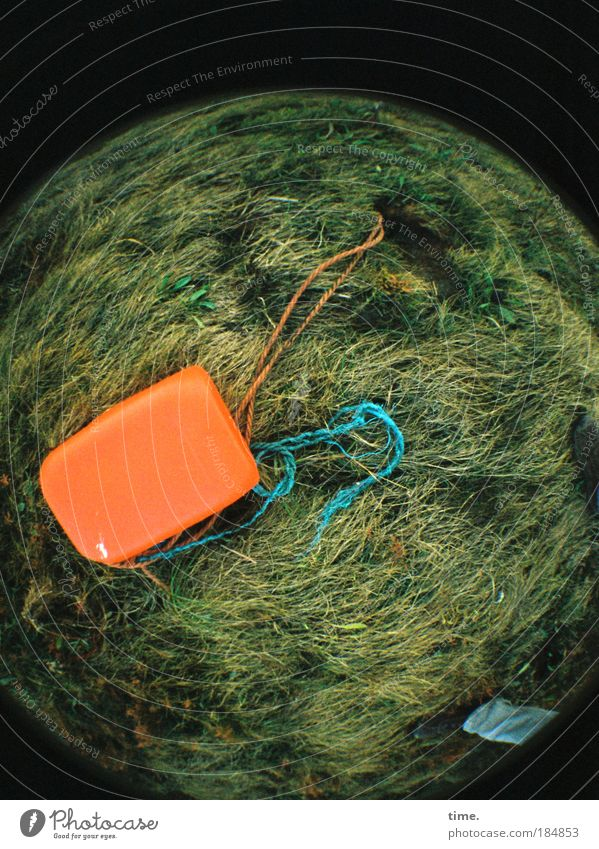 Planet Trash Rope Meadow Coast Lakeside Sphere String Lie Growth Trashy Canister Orange Things Lawn Leashed Flood Lomography Fisheye