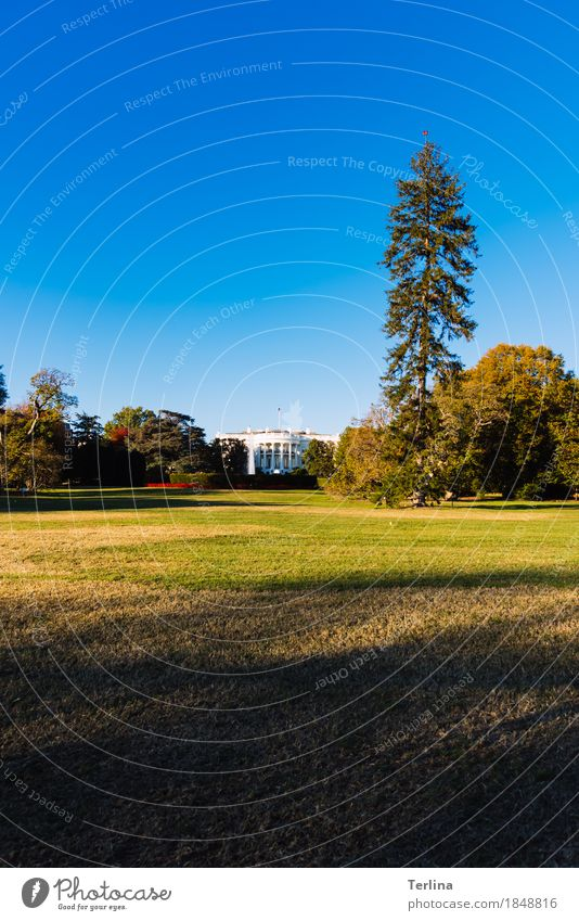 The White House Washington USA Capital city Tourist Attraction Authentic Threat Historic Rich Eroticism Strong Honor Self-confident Power Might Disciplined