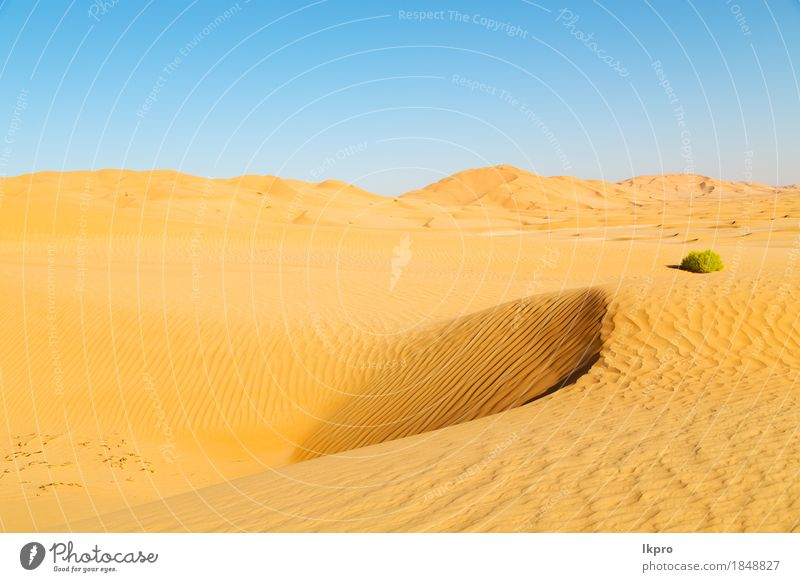 and outdoor sand dune in oman old desert rub al khali Sky Nature Vacation & Travel Summer Beautiful White Sun Landscape Loneliness Black Yellow Gray Stone Sand
