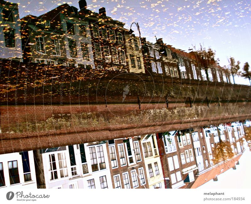 Not everything that glitters is gold. City trip House (Residential Structure) Water Sky Autumn Leaf River bank Middelburg Netherlands Port City Building