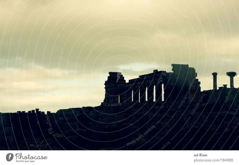 No one knows Art Sculpture Culture Sky Clouds Fog Rain Old town Ruin Manmade structures Architecture Monument Volubilis Roman era Rome Morocco