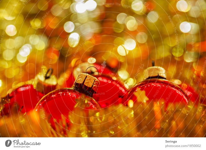 Christmas mood, warmth, Merry Christmas Feasts & Celebrations Christmas & Advent New Year's Eve Glittering Glitter Ball Christmas tree Church festival of love