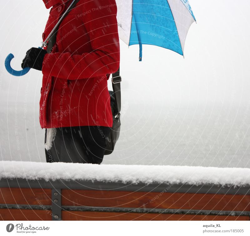 red, blue, white Elegant Pants Jacket Coat Gloves Umbrella Walking Bench Snow Snowfall Snowflake Water Lakeside Red Bag Fog bank Shroud of fog Exterior shot