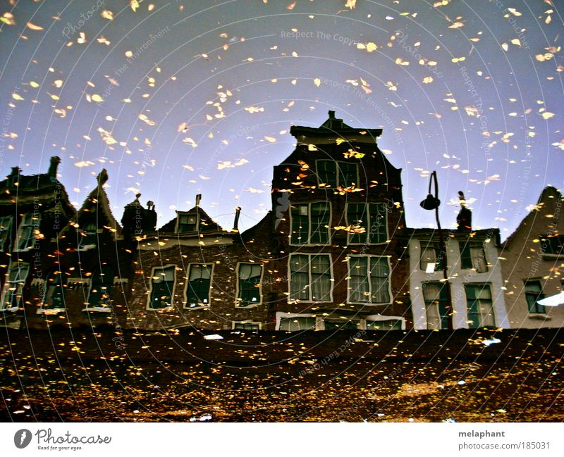 Pour glitter on it. House (Residential Structure) Environment Water Cloudless sky Autumn Leaf River Netherlands Port City Manmade structures Wall (barrier)