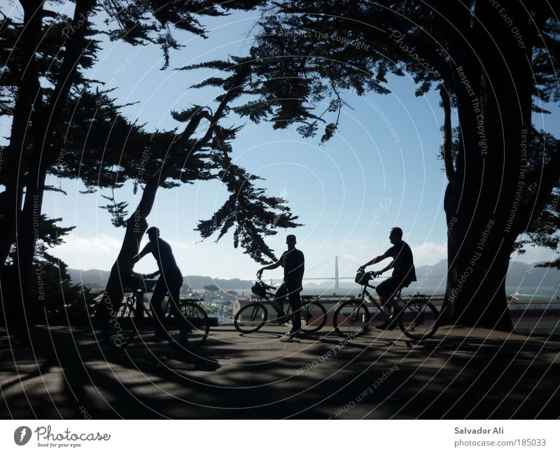 Justus Jonas, Peter Shaw, Bob Andrews. Trip Sightseeing Cycling tour Bicycle Forest San Francisco Golden Gate Bridge USA Americas Discover Relaxation Driving