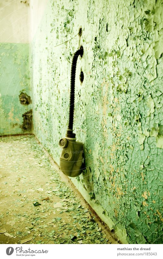 Old Green Loneliness Colour Dark Wall (building) Building Wall (barrier) Funny Room Dirty Facade Exceptional Broken Factory Mask