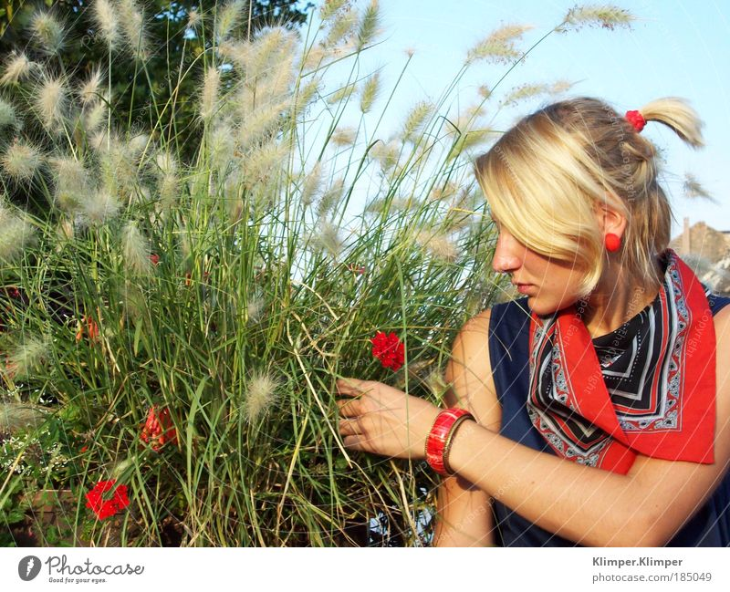 Youth (Young adults) Green Plant Red Summer Vacation & Travel Relaxation Feminine Woman Blossom Grass Dream Human being Moody Weather Blonde
