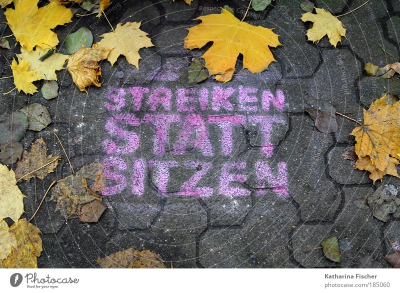 STRIKE INSTEAD OF SIT Autumn Leaf Town Street Stone Concrete Brown Yellow Gray Might Brave Determination Attachment Graffiti Lanes & trails street scene Slogan