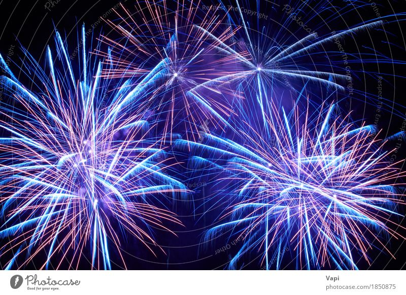 Blue colorful fireworks on the black sky Sky Blue Christmas & Advent Colour White Red Joy Dark Black Art Freedom Feasts & Celebrations Party Pink Bright Violet