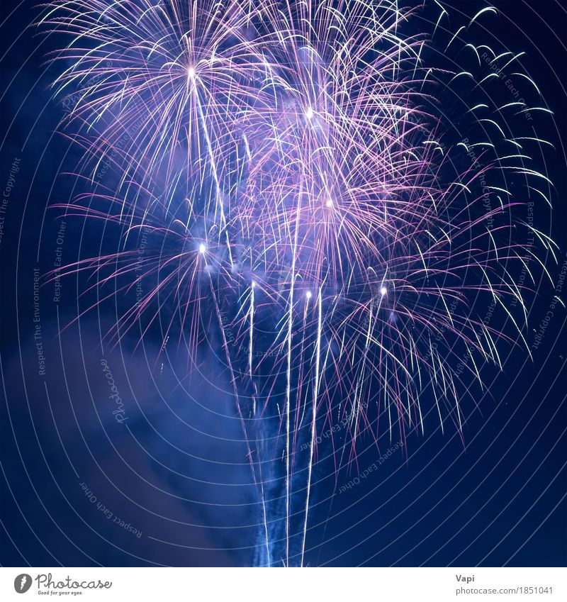 Colorful fireworks on the black sky Sky Blue Christmas & Advent Colour White Red Joy Dark Black Yellow Art Freedom Feasts & Celebrations Party Design Bright
