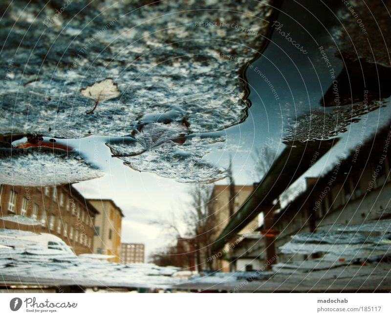 BREAKING THE FRAME Environment Water Autumn Climate Weather Storm Fear Puddle Surrealism Daydream Apocalypse Perspective Whimsical Opposite Foreign Colour photo