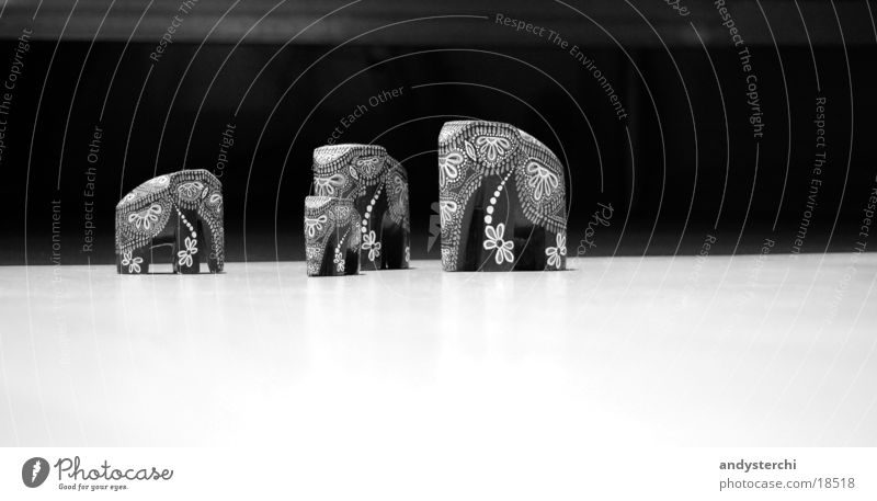 elephants Elephant Things Animal Trunk Pattern Wood pachyderms Black & white photo Floor covering Wild animal sr lanka carved