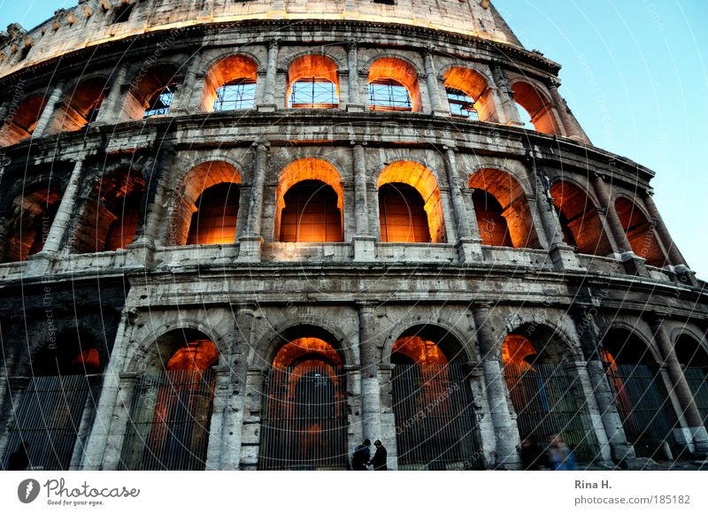 colossally Human being Rome Italy Manmade structures Tourist Attraction Landmark Colosseum Illuminate Exceptional Gigantic Might Death Pride Ruin Antiquity