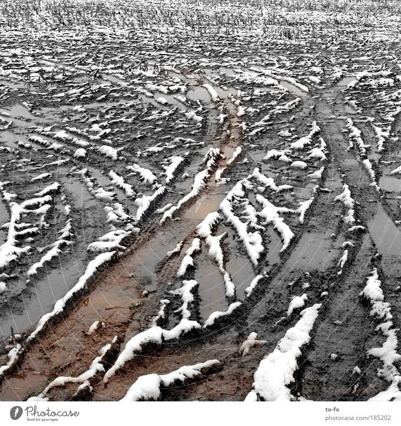 Winter Loneliness Snow Autumn Landscape Field Weather Earth Tracks Boredom Bad weather Abstract Muddy