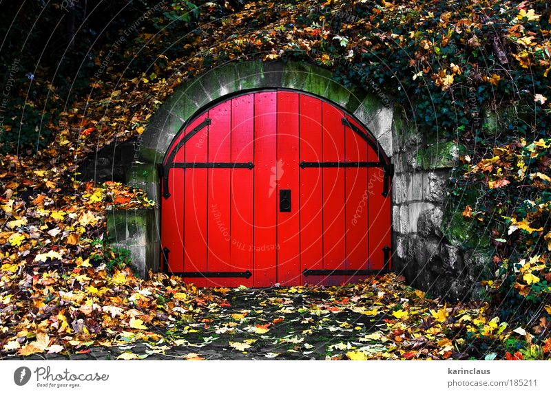 behind the red door Nature Green Red Yellow Colour Autumn Wall (building) Wood Stone Wall (barrier) Park Landscape Brown Architecture Door