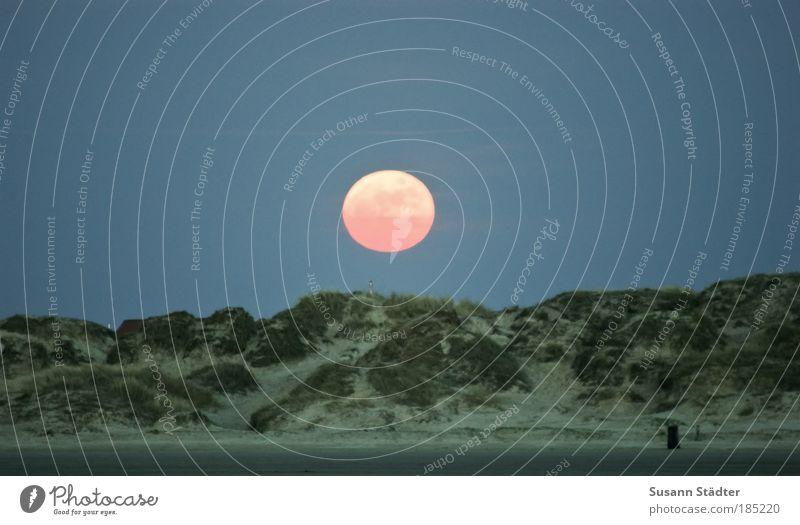 Summer Beach Grass Planet Bright Coast Night Environment Earth Night sky Hill Illuminate Moon To enjoy Beach dune Elements