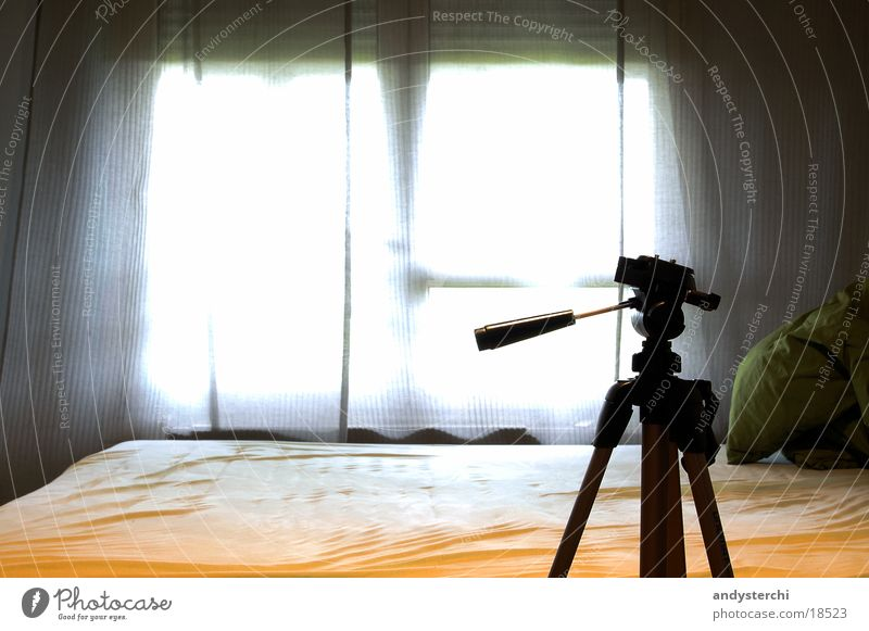 Window Wood Legs Bright Room Photography Bed Living or residing Furniture Drape Tripod Lever