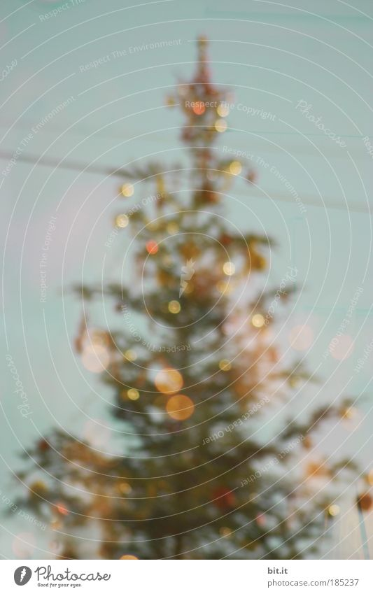 SANTA DANIEL-GIVE ME TRIPODS Lifestyle Feasts & Celebrations Event Sunlight Winter Tree Glittering Fantastic Kitsch Crazy Trashy Blue Multicoloured