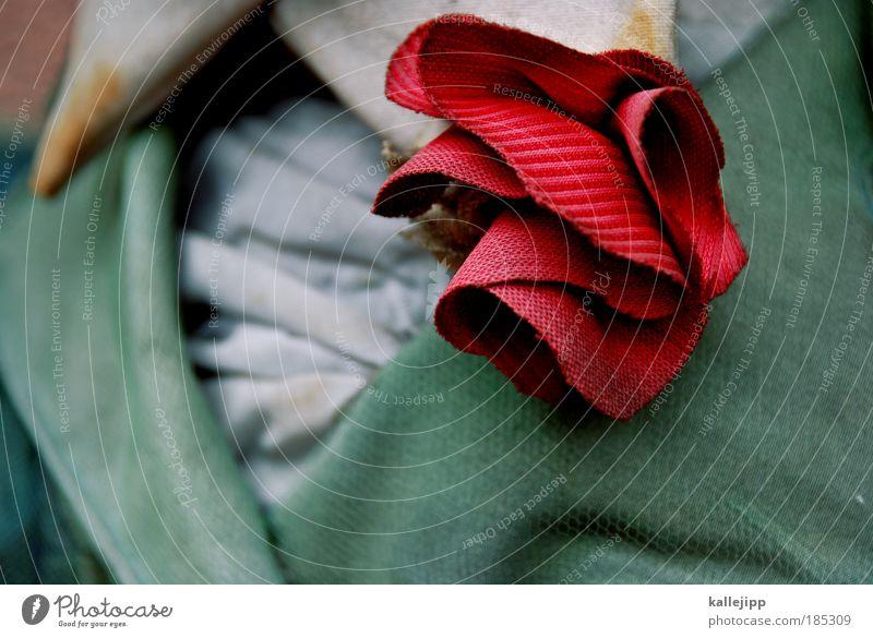 Red Style Fashion Elegant Design Esthetic Lifestyle Clothing Jacket Shirt Jewellery Luxury Theatre Noble Pride