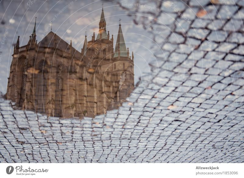 Pompom puddle I Erfurt Town Downtown Old town Deserted Dome Tourist Attraction Landmark Religion and faith Puddle Water Cobblestones Cathedral Square Reflection