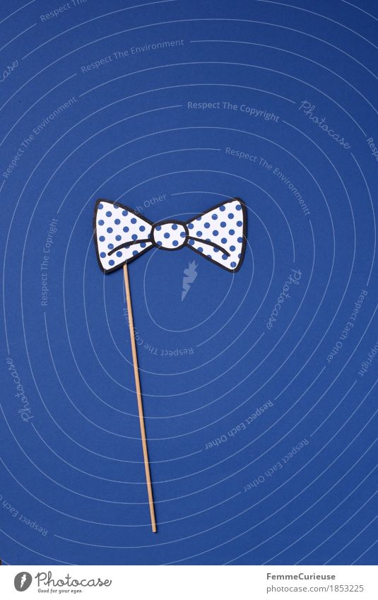 Fly_1853225 Fashion Bow tie Esthetic Festive Elegant Going out Point Spotted Blue White Impaled Wood Accessory Dress up Carnival Party Cardboard Paper Home-made