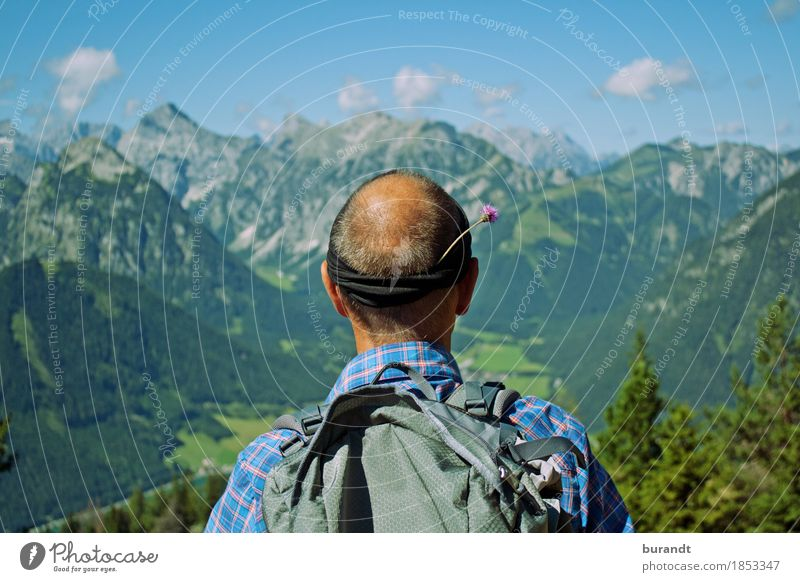 Zwoa Blüamal stian at the meadow edge Masculine Man Adults Bald or shaved head 1 Human being 45 - 60 years Environment Nature Landscape Plant Beautiful weather