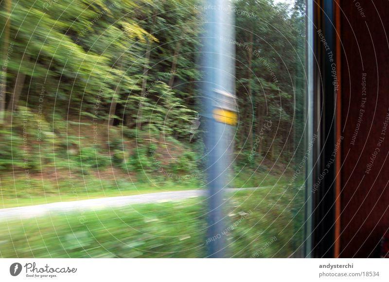masts Speed Forest Transport Railroad sihltal Railway to zurich Coil Lanes & trails